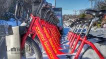 Snowy Bikeshare Lp wm